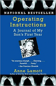 Operating Instructions Pregnancy Book
